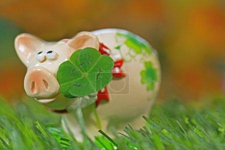 Photo pour Cochon porte-bonheur, figurine Cloverleaf - image libre de droit