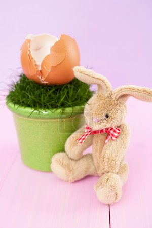 Soft toy bunny with egg shells