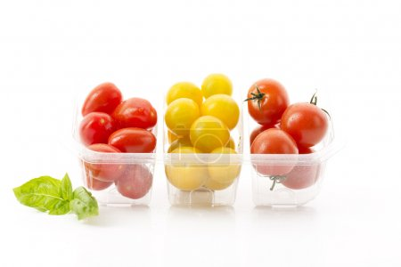 Different colorful tomatoes
