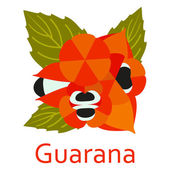 Super food icon Guarana Vector illustration