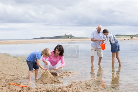 Grandparents and grandchildren playing at the beach