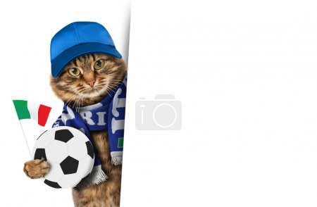 Funny cat with soccer ball