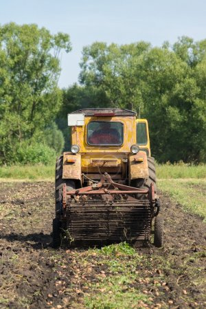 tractor digging potatoes