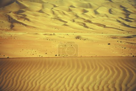 Wind created patterns in the sand dunes of Liwa oasis, United Arab Emirates