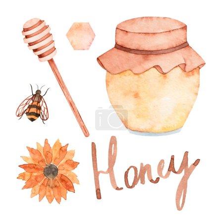 Set of watercolor illustrations hand drawn honey j...