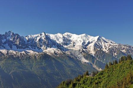 The Alpine nature