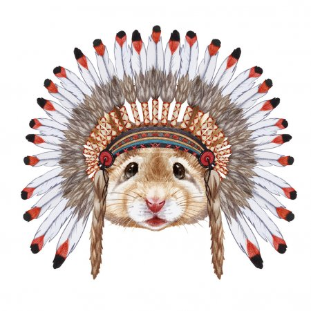 Portrait of Mouse in war bonnet.