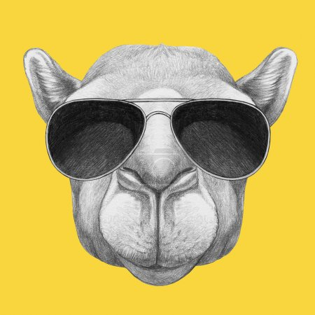 Photo pour Portrait de chameau avec des lunettes. Illustration dessinée main . - image libre de droit