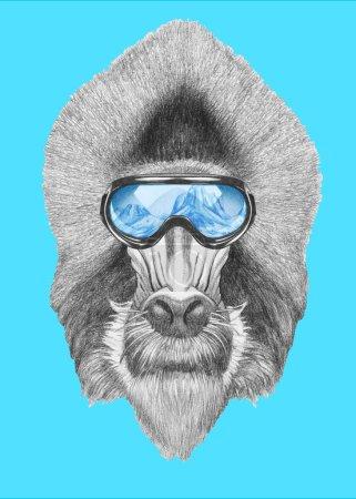 Photo pour Portrait de Mandrill avec lunettes de ski. Illustration dessinée main . - image libre de droit