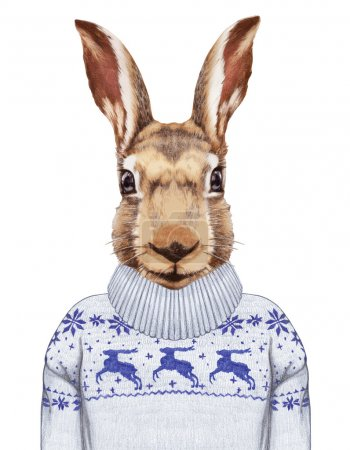 Photo for Portrait of Hare in sweater. Hand-drawn illustration, digitally colored. - Royalty Free Image