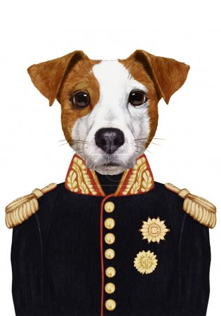 Portrait Jack Russell of in military uniform.
