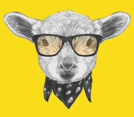 Portrait of Lamb with glasses and scarf.