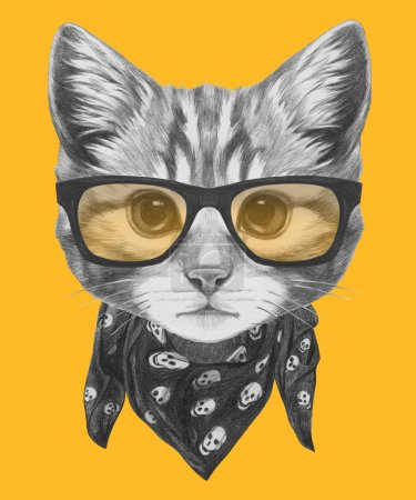 Cat with glasses and scarf