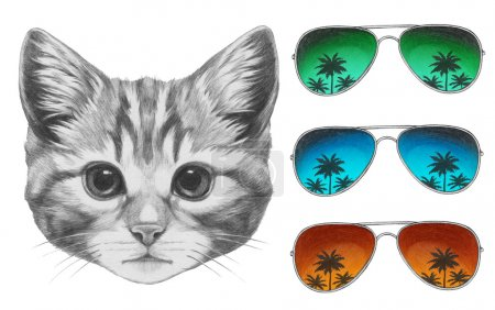 Cat with mirror sunglasses