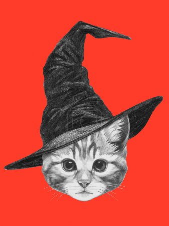 Portrait of Cat with witch hat