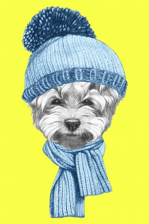 Photo for Portrait of Maltese Puddle Dog with hat and scarf. Hand drawn illustration. - Royalty Free Image