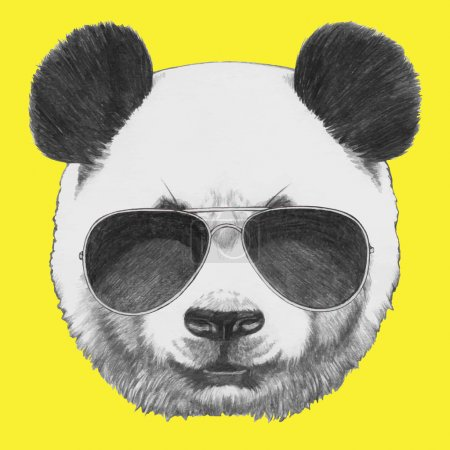 portrait of Panda with sunglasses