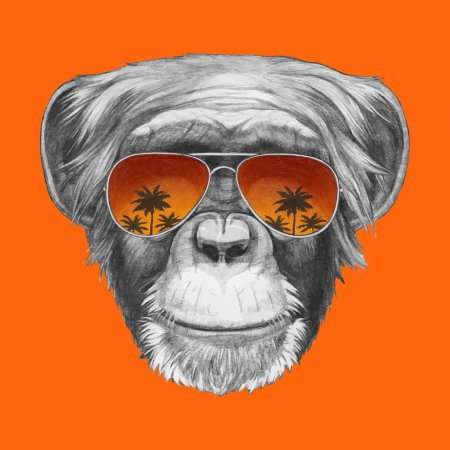 Monkey with mirror sunglasses