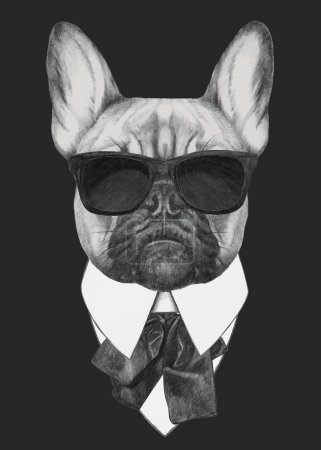 French Bulldog fashion portrait