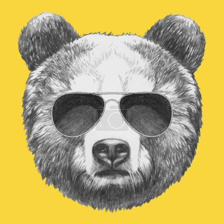 portrait of Bear with sunglasses