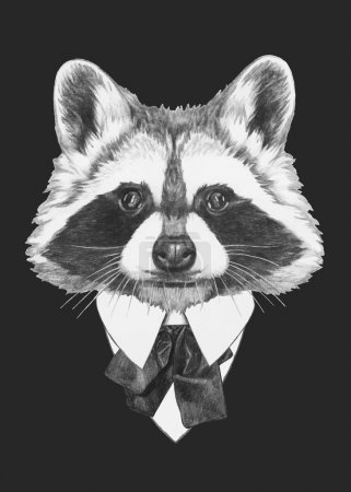 fashion Illustration of Raccoon