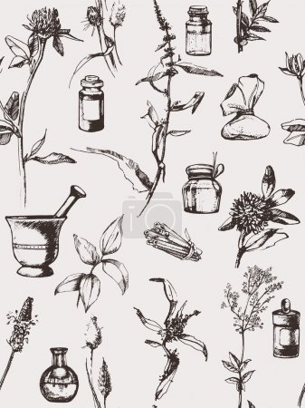 Illustration for Hand drawn seamless pattern with herbs. Vector - Royalty Free Image
