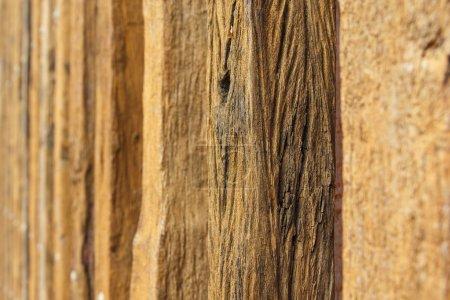 Photo pour Vieux bois fond bois - image libre de droit