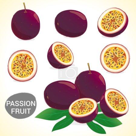 Jeu de fruit de la passion (maracuja) dans divers styles vector format