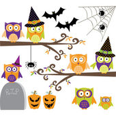 The vector for Happy Halloween Owls collections