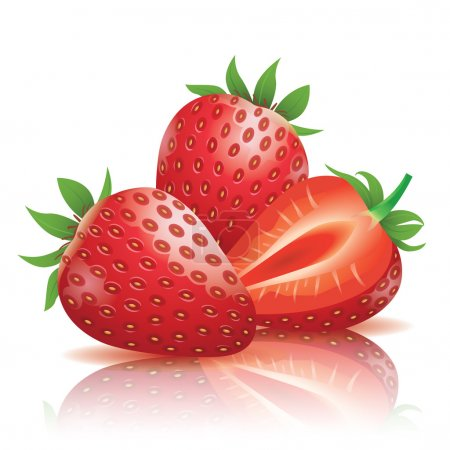 Realistic strawberry vector illustration....