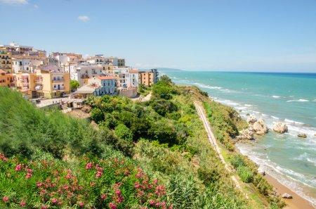 Mediterranean maquis  rodi garganico apulia italy gargano