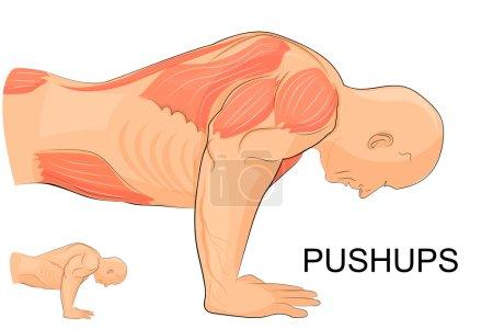 the man performing push-UPS