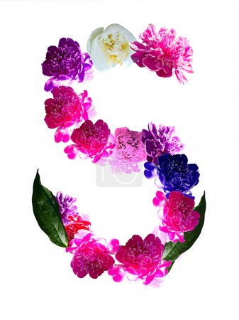S- for spring. Colorful pions in S letter
