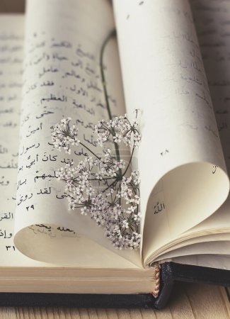 romantic view of Arabic book with wildflower