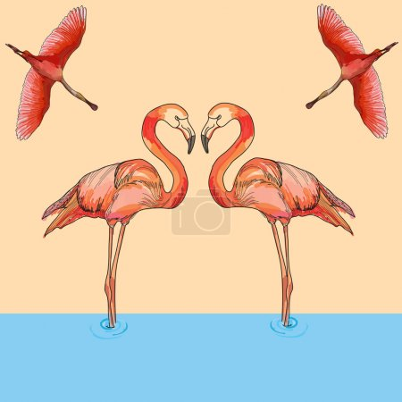 Illustration of Flamingos in flight and water