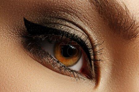 Elegance close-up of beautiful female eye with fashion eyeshadow and eyeliner. Macro shot of woman's beautiful blue eye with extremely long eyelashes. Sexy view, sensual look