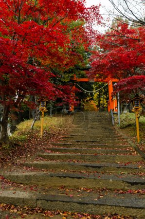 Visit Chureito Pagoda stairs during autumn