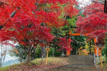 Visit Chureito Pagoda stairs during autumn