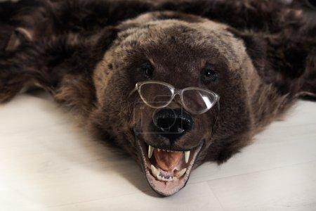 fell of bear