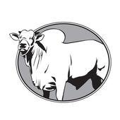 Bull zebu vintage logo