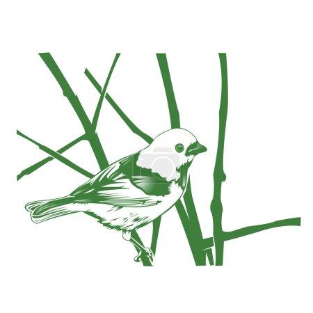 bird on the branch-vintage hand drawn