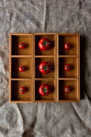 Photo pour Tomates fraîches disposées dans une forme carrée en bois brune clair, tomates mis en correspondance en taille et se trouvent dans les cellules - image libre de droit