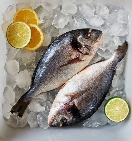 Fresh fish is in a container with ice