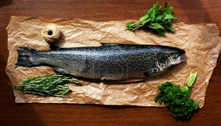 Photo for Salmon carcass lying on brown parchment paper near greens, parsley, rosemary and mushroom - Royalty Free Image