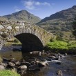 Old bridge over a river in the highlands, scotland