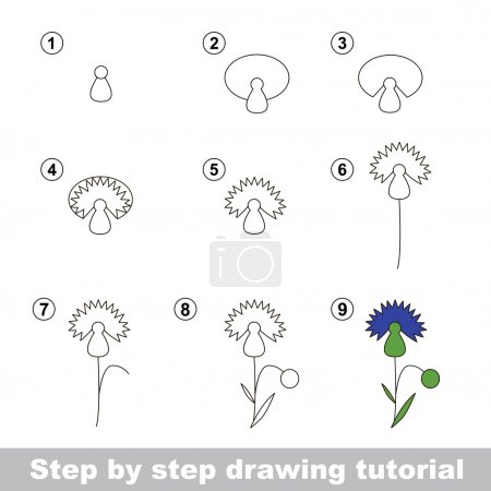 Illustration for Step by step drawing tutorial. Vector kid game. How to draw a Cornflower - Royalty Free Image