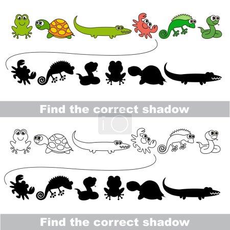 Illustration pour Ensemble amphibie avec des ombres pour trouver la bonne. Comparer et connecter des objets. et leurs vraies ombres - image libre de droit