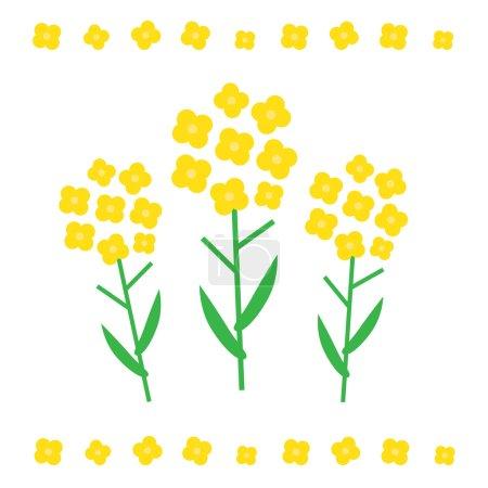 Illustration pour Illustration vectorielle de fleurs de canola. Concept de fleurs de canola dans un style plat. Fleurs de canola - image libre de droit