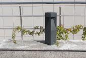 Moderní pouliční lampu, zábradlí a ivy větev