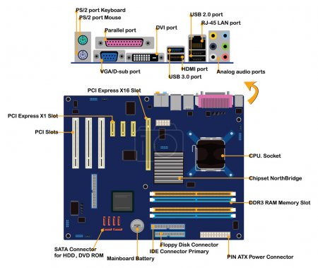 Illustration for Computer motherboard parts connector ports info graphic vector - Royalty Free Image